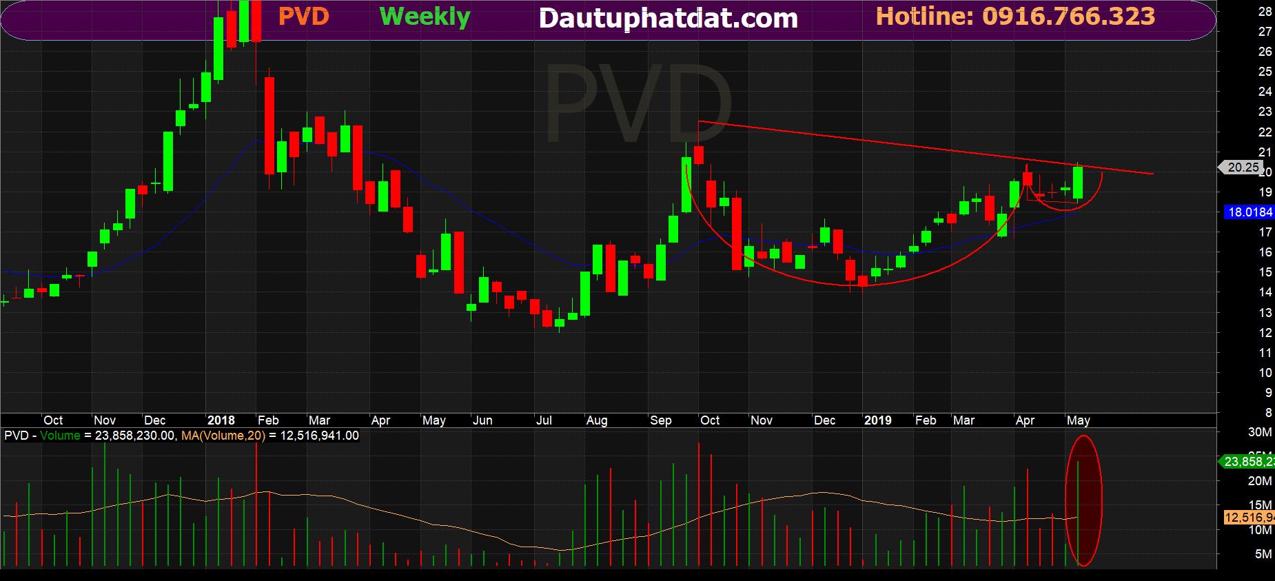 PVD week