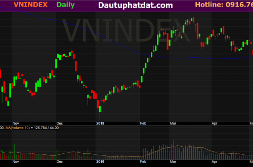 vnindex day