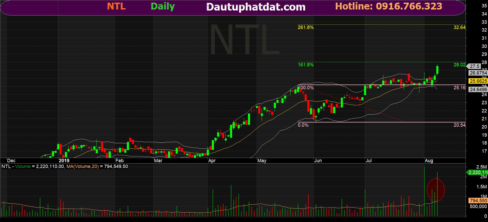 Đồ thị ngày cổ phiếu NTL