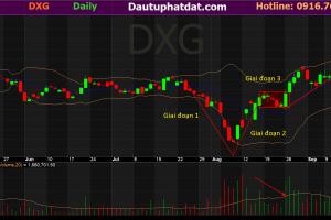 Đồ thị ngày cổ phiếu DXG Victory