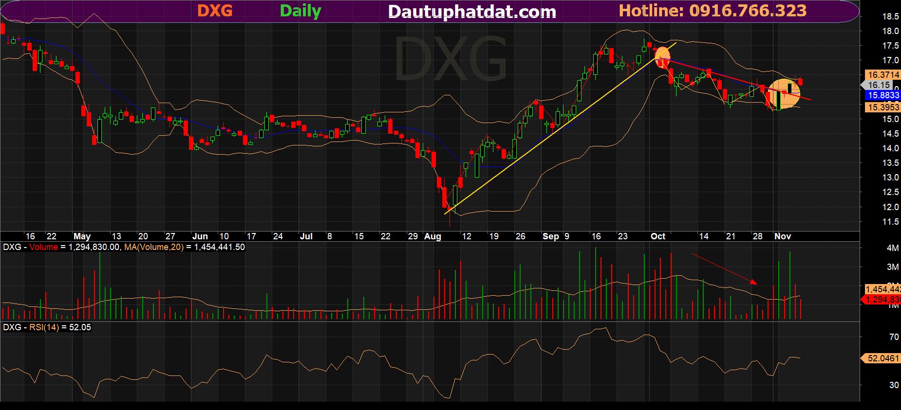 chart tuần DXG