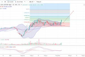 Phân tích kĩ thuật cổ phiếu BNA
